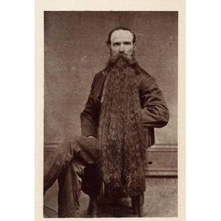 Основные советы по уходу за бородой.